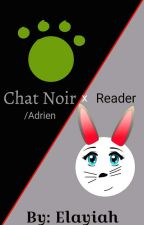 Adrien/Chat Noir x Reader (Slow Updates/Discontinued!!!) by Elayiah