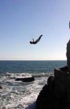 No, I'd rather jump off a cliff!! by brigit53