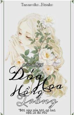 [ĐN HP] -Đoá hoa hồng trắng-