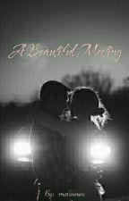 A Beautiful Meeting by _marieeenne
