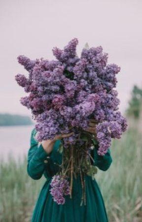 Lilac  by kipperdafroggy