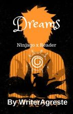 Dreams \\ Ninjago Reader Insert // (Ninjago x Reader) by WriterAgreste
