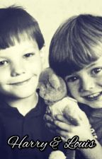 Harry & Louis - Our Story (Larry Stylinson) cz, sk by labyork