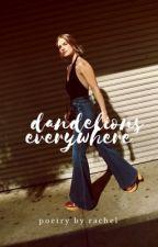 Dandelions Everywhere  by -racheI