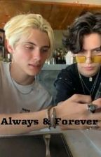 Forever & Always by RosedBambino