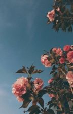 𝐑𝐄𝐀𝐋𝐈𝐒𝐌 | kny by okadaes