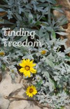 Finding Freedom by Writter431