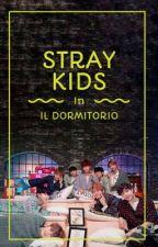 STRAY KIDS // IL DORMITORIO  by ircome