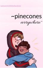 ~pinecones everywhere~ by iamonewiththefandom