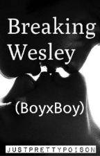 Breaking Wesley (boyxboy) by justprettypoison