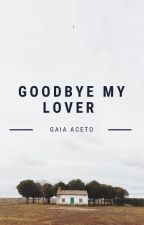 Goodbye My Lover by gaiaceto20