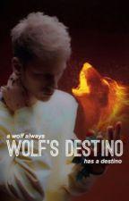 Wolf's Destino  by JayJoker19