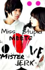 Ms. Stupid ----->  Meets    Mr.Jerk by megumi_0216