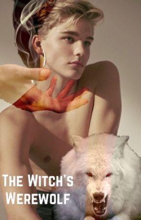 A Witch's Werewolf {BoyxBoy} by _A13XA_