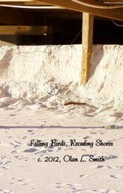 Falling Birds  Receding Shores by CottonJones
