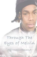 Through The Eyes of Melvin by rosesinthesand