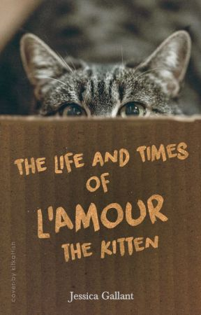 The Life and Times of L'Amour the Kitty by JessicaGoyette