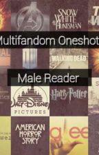 Multifandom Oneshots - Male Reader  by Redarrow98