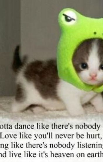 Wholesome Memes For Sad People Ashl0390 Wattpad