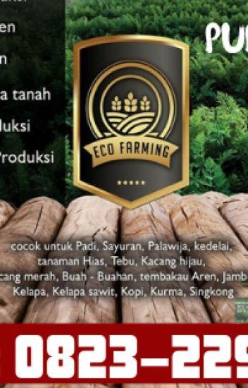 ✅TERBATAS_0823*2292*4990. DISTRIBUTOR pupuk eco farming hama anggrek Turikale
