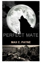 Perfect Mate (BoyxBoy) by max2payne0