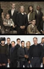 NCIS REVIEW AND SPOILERS  by chloegrace108