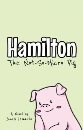 Hamilton: The Not-So-Micro Pig by lookitsdaryl