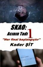 SKAO: Acının Tadı 1 by TenebrisEmergere