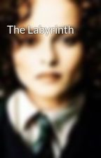 The Labyrinth  by DittoSamaLeRavenclaw