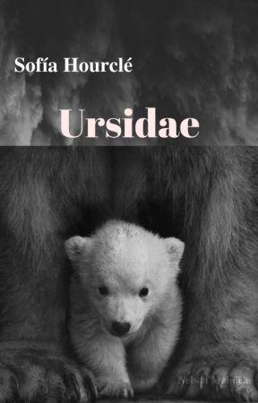 Ursidae by Sophia_Hourcle