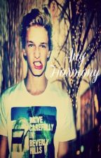 Any Harmony (Sequel to Every Melody) (Cody Simpson Fan Fiction) by BreathingWater