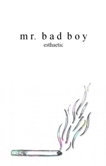 Mr. Bad Boy 》c.d. [editing]