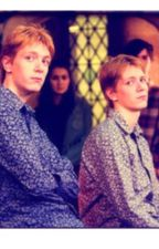 Double Trouble a Fred and George Weasley fanfiction by battleboss1
