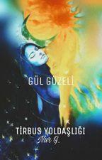 TİRBUS YOLDAŞLIĞI by Sevdenurgozderesi