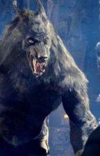 The Neko Werewolf  by AnimeLoverDxD19