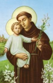 SAINT ANTONY OF  PADUA: THE SERMONS   Part 1 & 2 by ebe1992