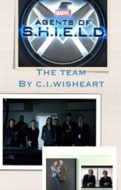 Agents of shield: the team by C41tl1nW15h