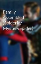 Family Assembled (Spiderio/ MysterySpider) by MysteryWeb