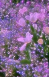 TikTok Camp || #1 by cat-donkey