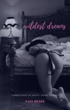 Wildest Dreams by fayerenee