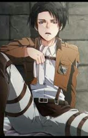 Levi x Reader: One shots [Shingeki no Kyojin/ Attack on Titan