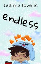 Tell Me Love Is Endless by wellhiimnate