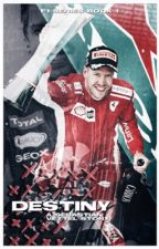 PERFECTLY WRONG | s. vettel by jcxxyz