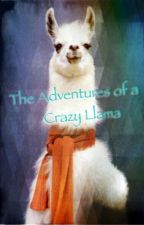The Adventures of a Crazy Llama by Divergent_Half-Blood