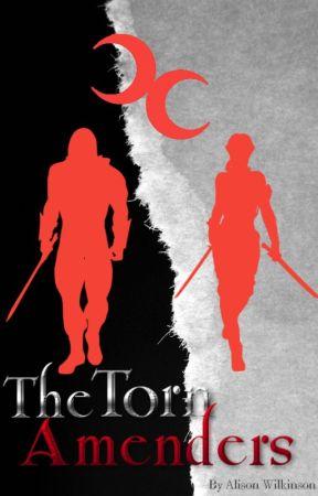 The Torn Amenders by AlisonWilkinson