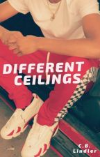 Different Ceilings (Lesbian Short Story) by LookImaFruitFly