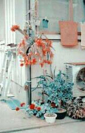 Aesthetics Portfolio by littlejendeukie