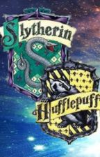 Slytherin and Hufflepuff Dorms by Hogwarts_School