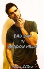 Bad Boy in Meadow Hills by melissalavone