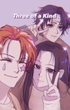 Three of a Kind    Illumi x Hisoka x Chrollo x reader by bigyummytoes